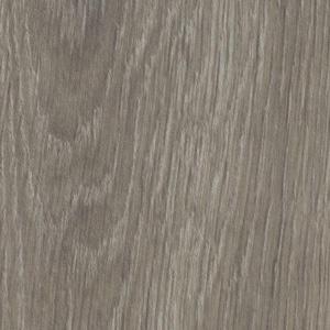 Grey Giant Oak