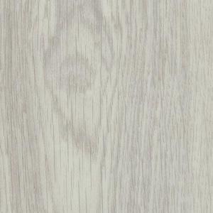 White Giant Oak